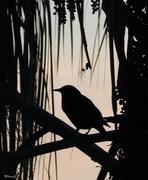 22nd Sep 2020 - Bird