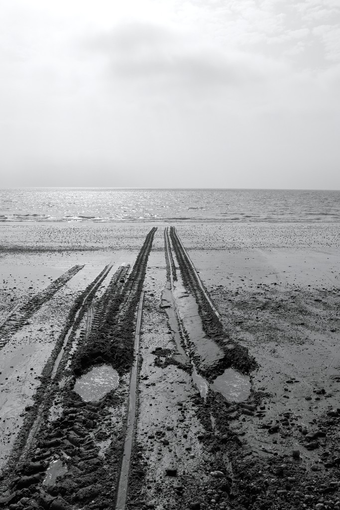 Tracks In The Sand by davemockford