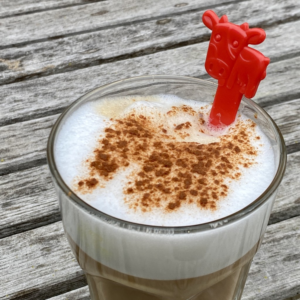 Good start of the day: cowpuccino ;) by stimuloog