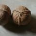 Грецкие орехи.
