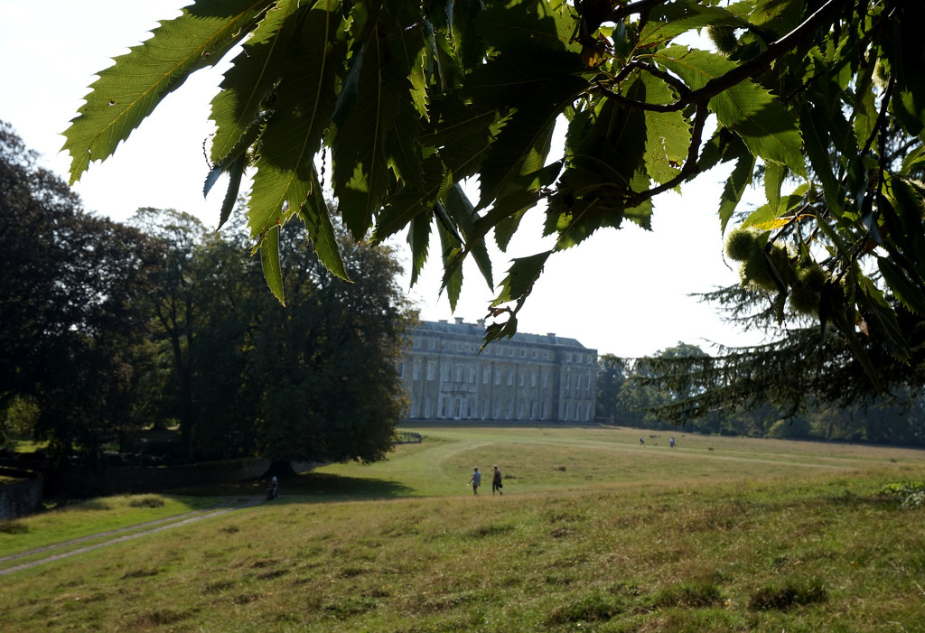 Sept 17th Petworth House by valpetersen