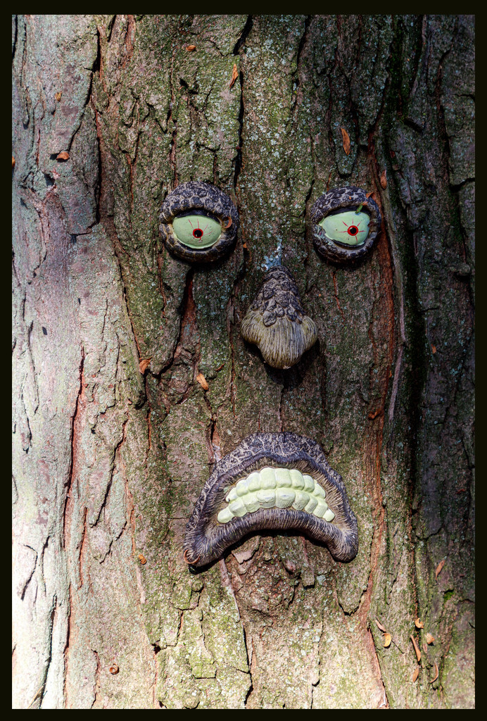 Angry Tree by hjbenson