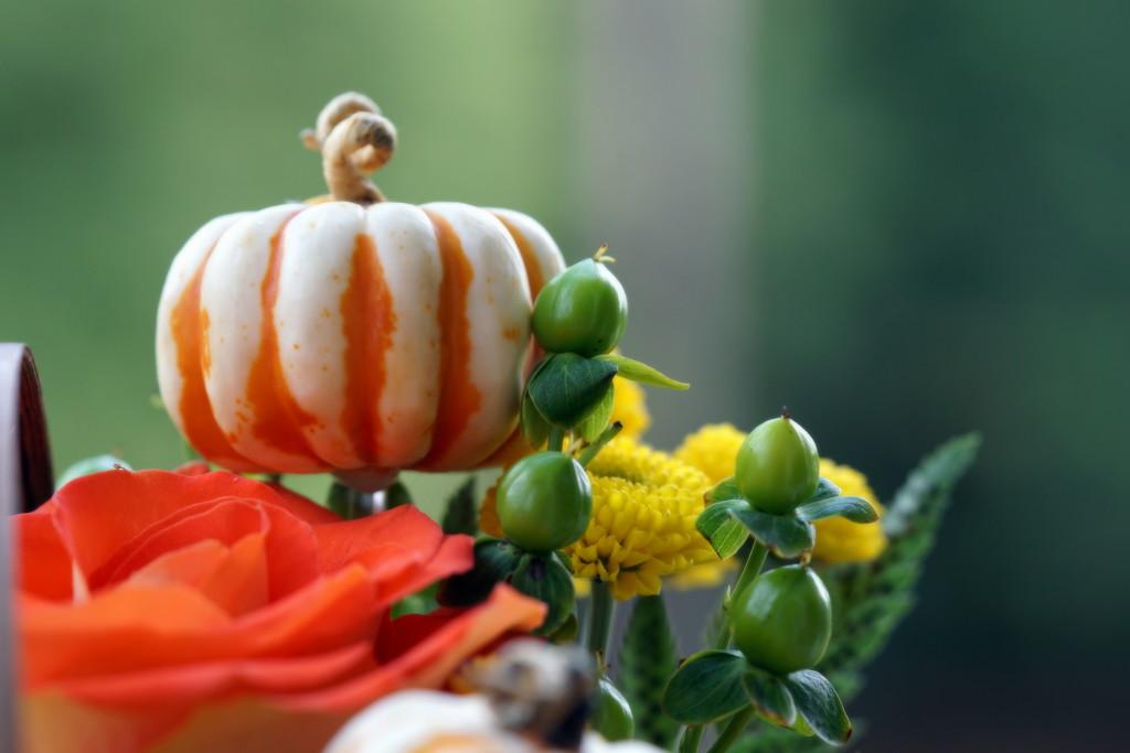 Fall by sunnygirl