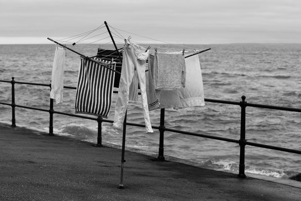 Hang 'em near the sea she said by wag864