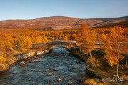 24th Sep 2020 - A beautiful autumn day on Dovre