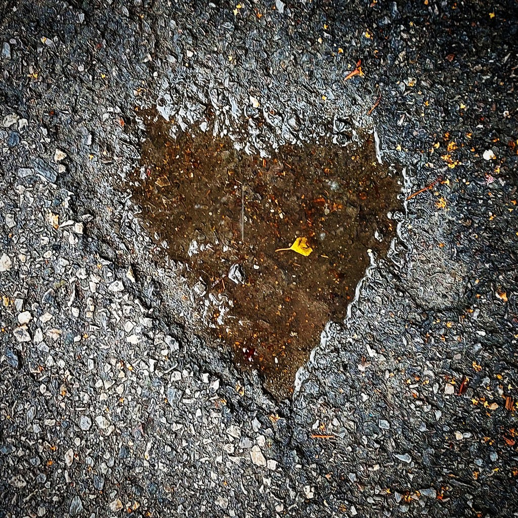 Heart puddle by axika