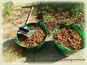25th Sep 2020 - baskets full of nuts