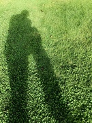 24th Sep 2020 - Shadows