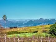 25th Sep 2020 - View towards Stellenbosch
