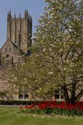 24th Sep 2020 - 0924 - Remembering Spring
