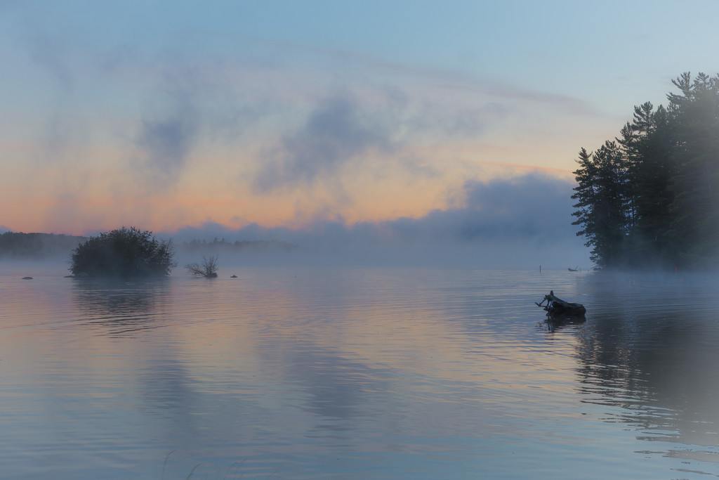 Misty Morning on Lake Opeongo by mgmurray