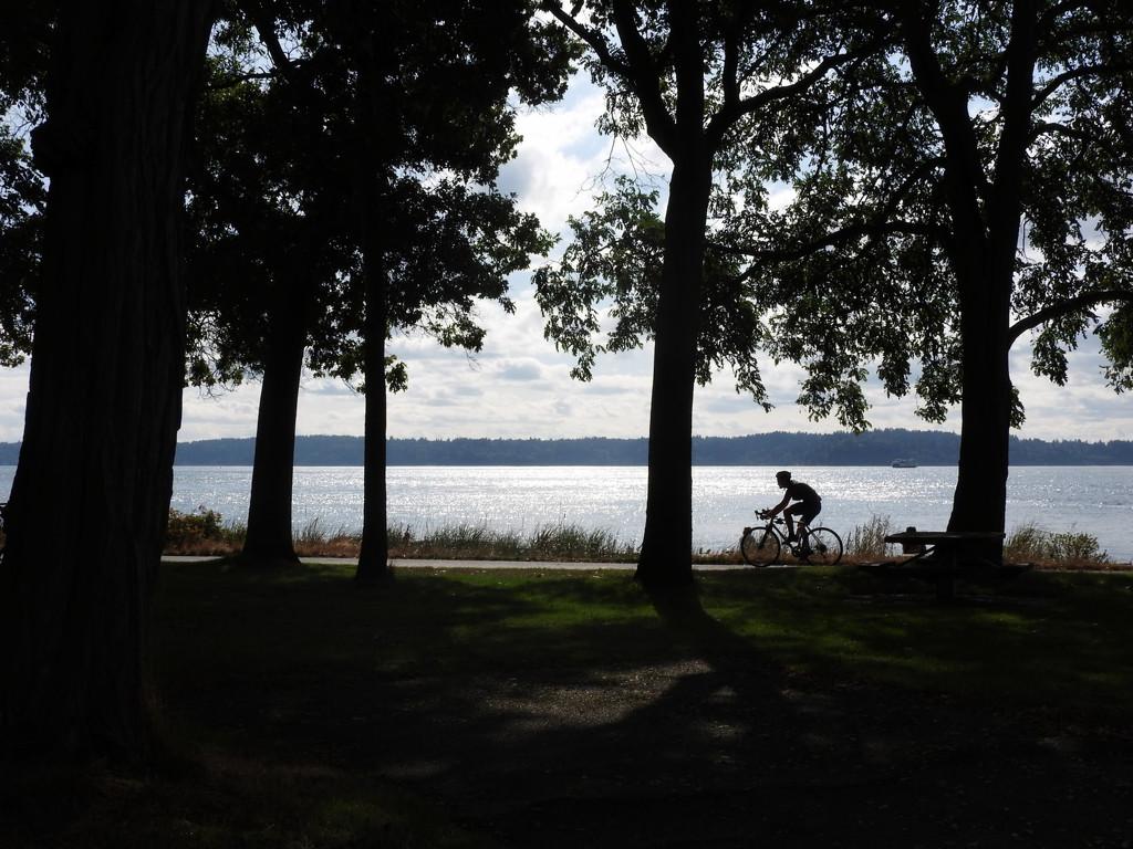 Bicylist Candid by seattlite