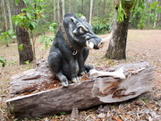 24th Sep 2020 - Dont you dare touch my bone!!!! Its mine!!