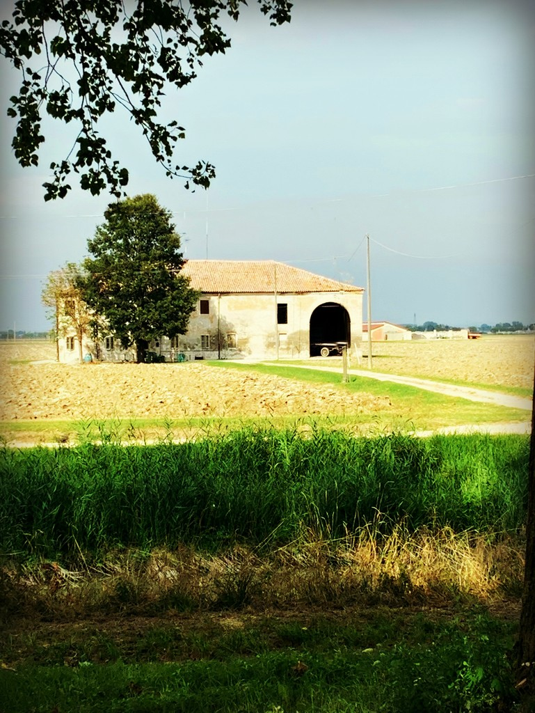 Country farm by caterina