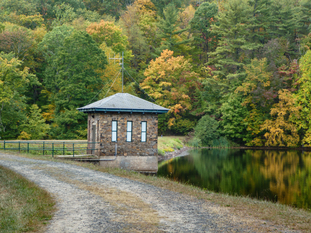Fall colors are coming in at the Reservoir by batfish