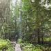 Hiking at Merry Creek