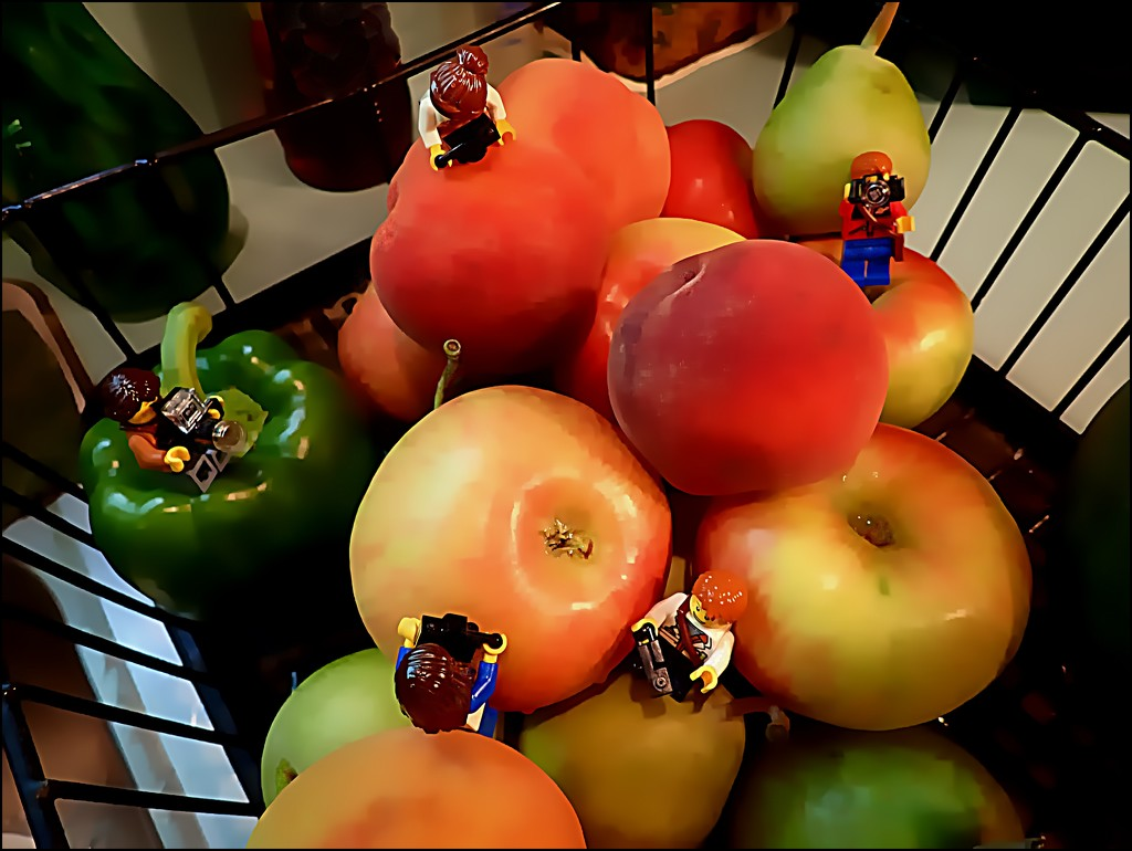 Fruits of the Season by olivetreeann