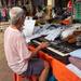 Musical Stallholder
