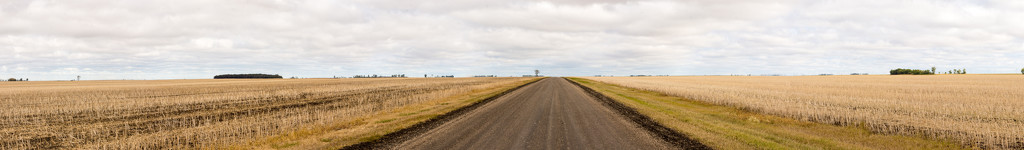 Flat Land Saskatcheewan by farmreporter