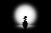 27th Sep 2020 -  Bonsai tree