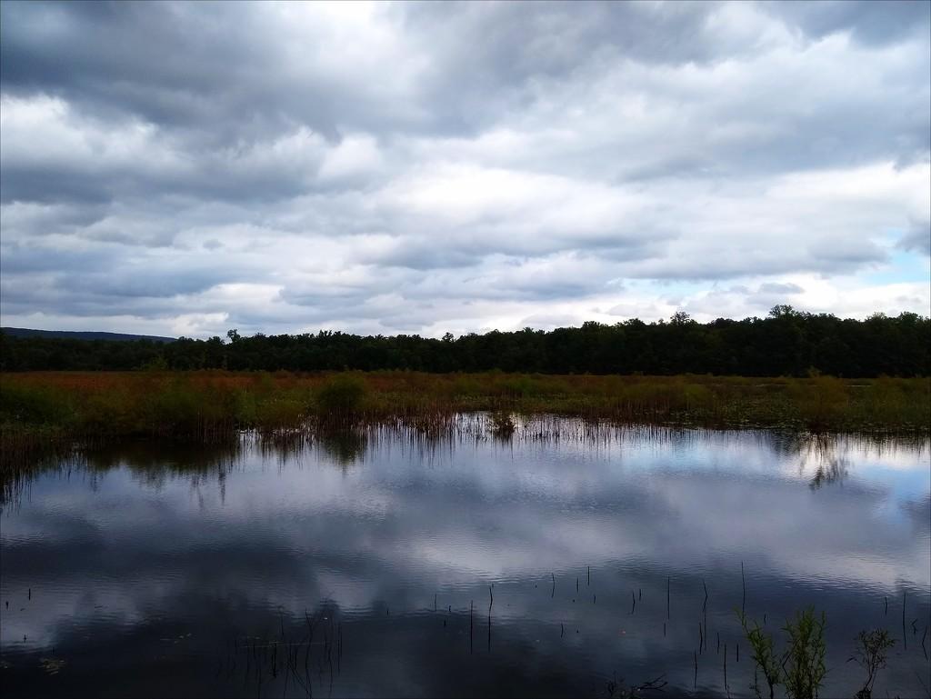 Mirrored Sky by olivetreeann