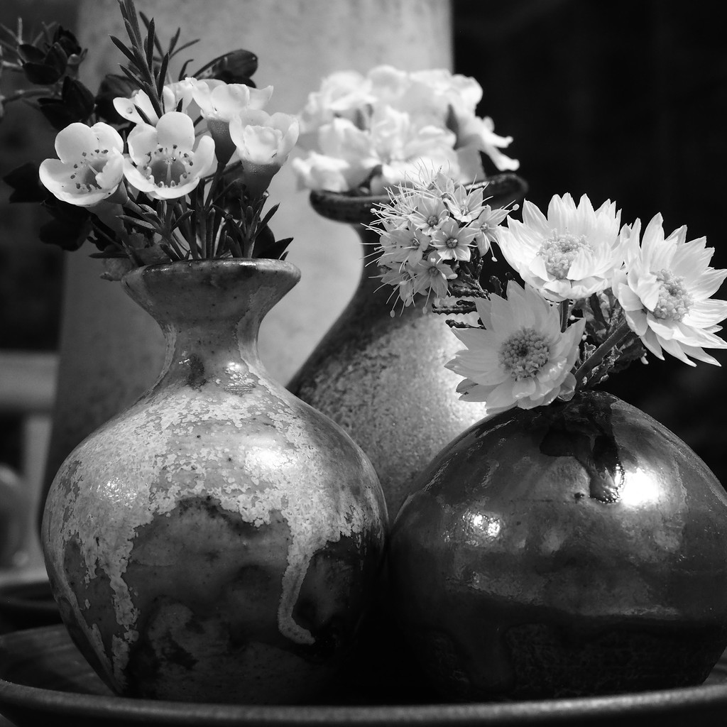 Vases by ethelperry
