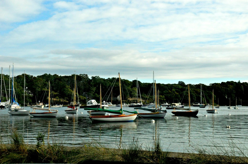 Racing fleet..... by sailingmusic