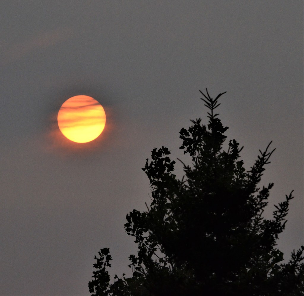 The setting sun by mjmaven