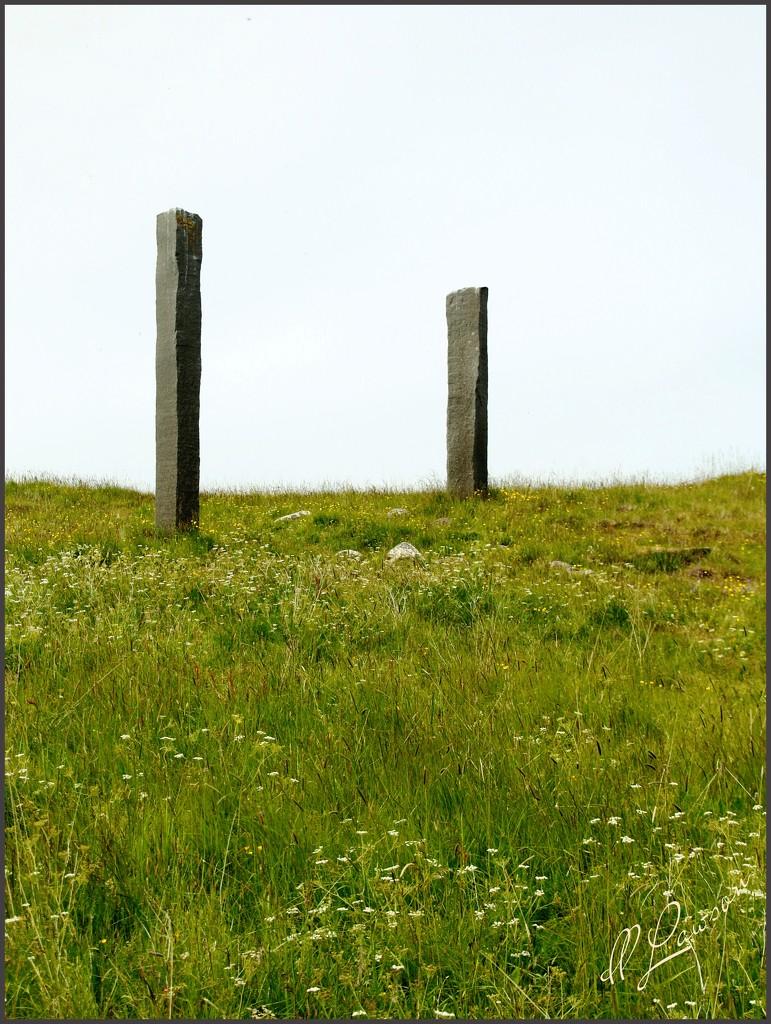 Basalts on Viðey Island by flygirl