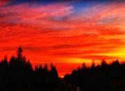 27th Sep 2020 - Orange Sky