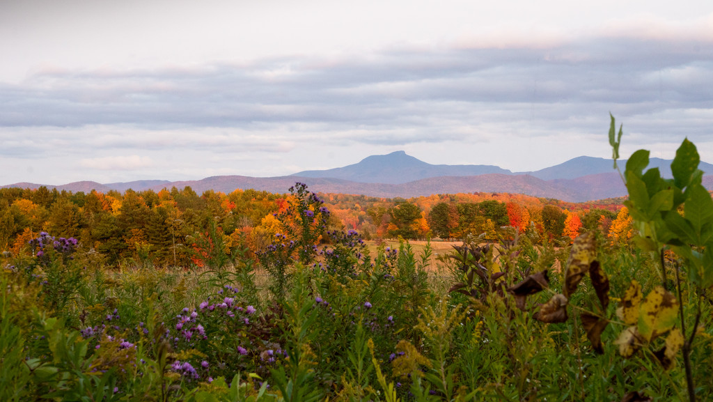 Vermont, late September by bmaddock