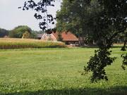 25th Sep 2020 - Goodbye Achterhoek