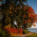 Autumn at the Lade Trail by elisasaeter