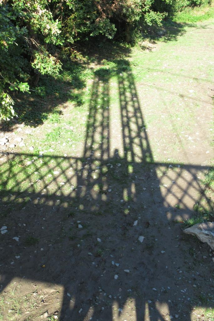 a shadow of my former self by anniesue