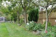 24th Sep 2020 - My Garden September 2020