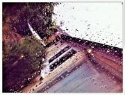 30th Sep 2020 - Raindrops keep falling...