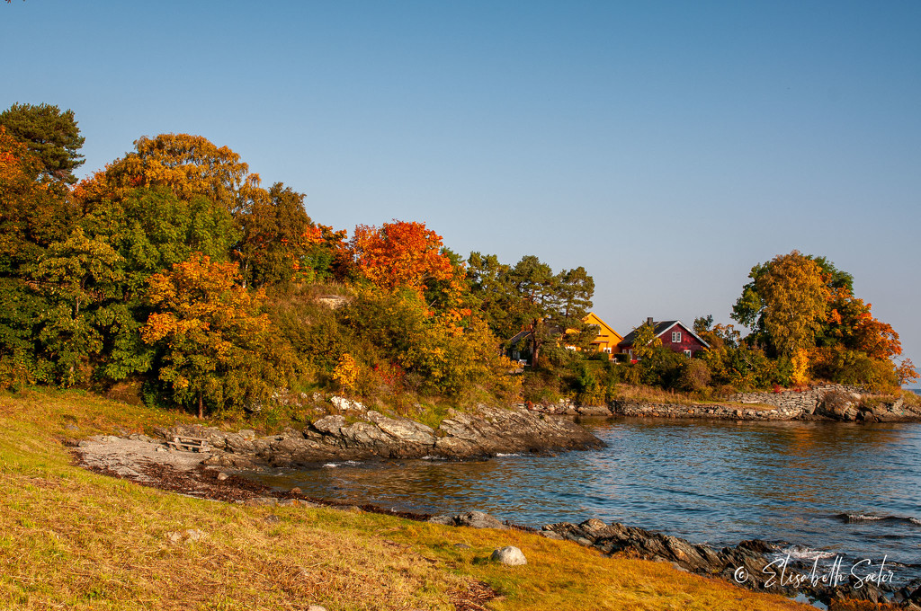 Autumn by the sea by elisasaeter