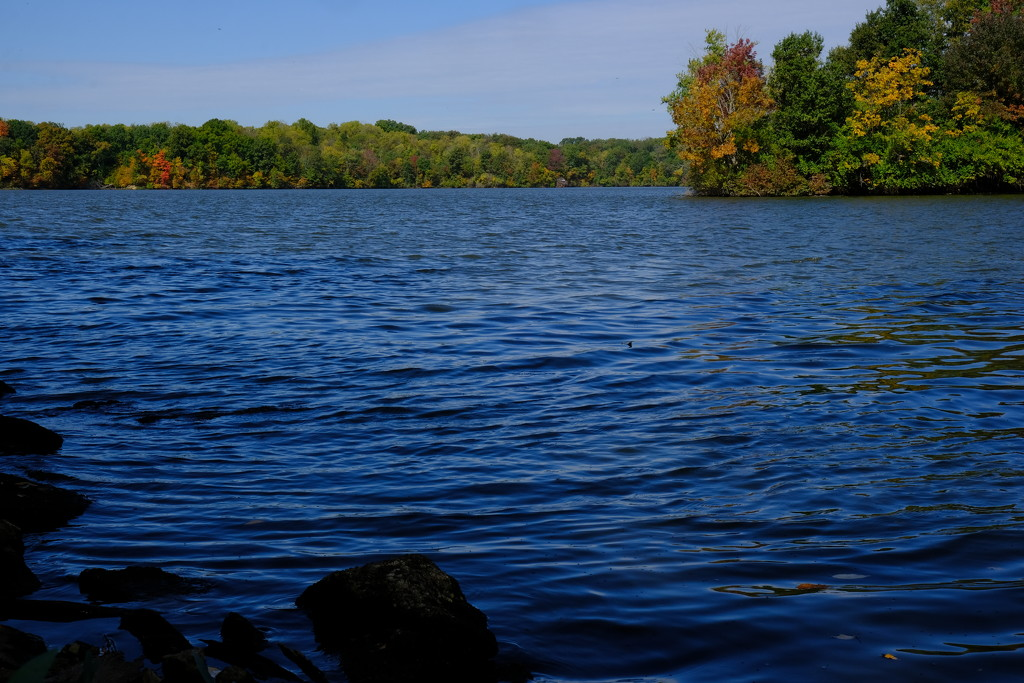 Silver Lake- nf-sooc-2020 by lsquared