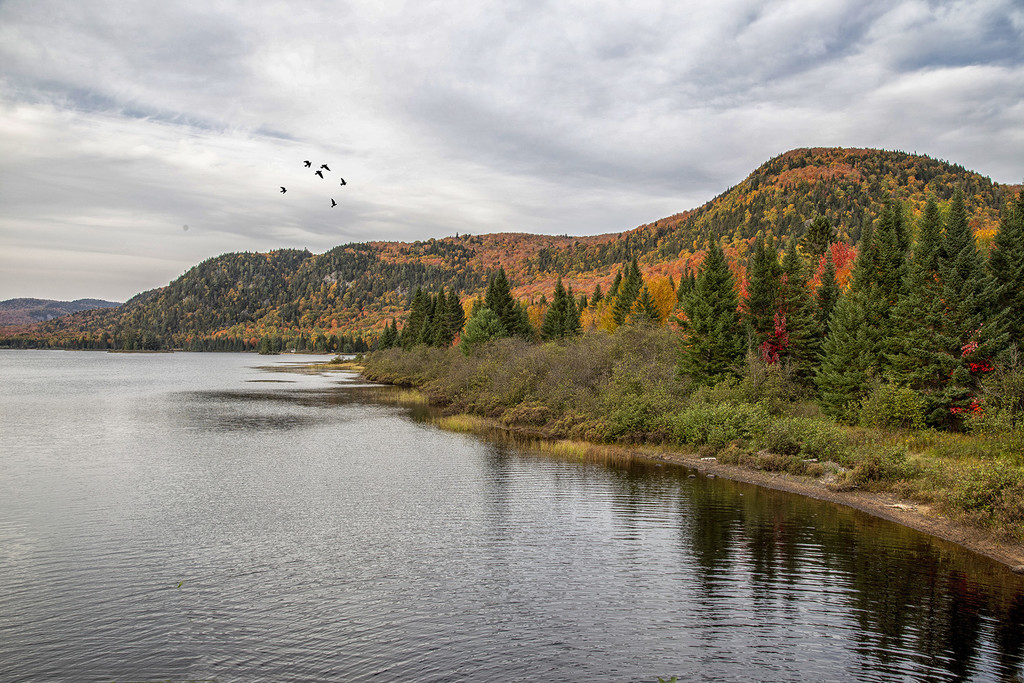 Fall Romance in Mont-Tremblant by pdulis