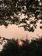 1st Oct 2020 - Red sun