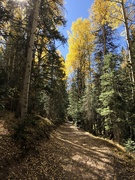 2nd Oct 2020 - Middle Fork hike
