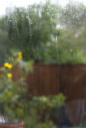 2nd Oct 2020 - Weather