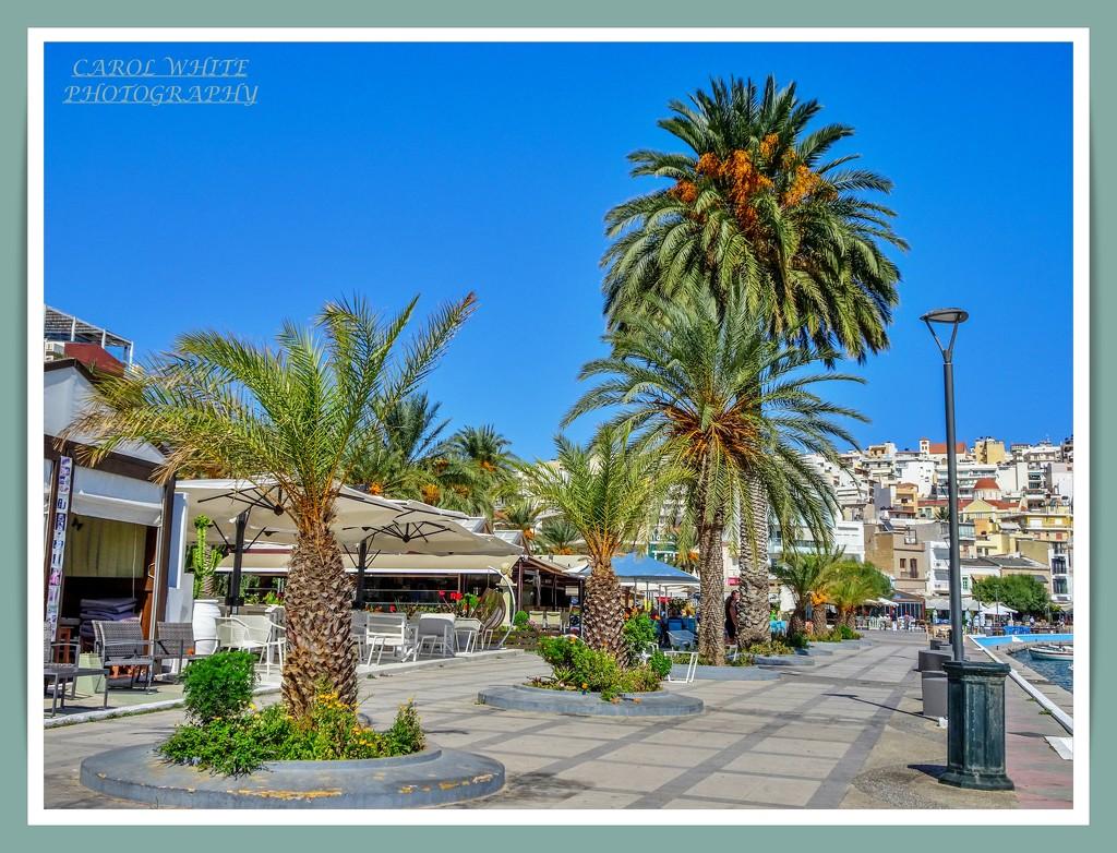 The Promenade,Siteia,Crete by carolmw