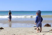 2nd Oct 2020 - Discovering the beach