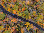 2nd Oct 2020 - Quebec's Canopy of Color