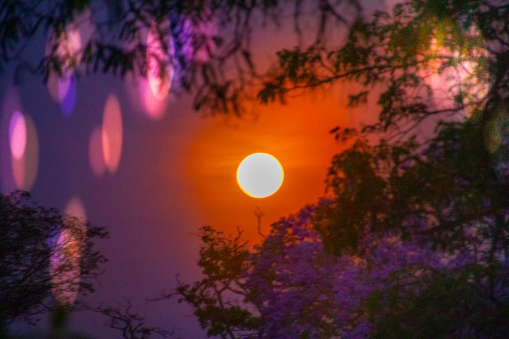 Moon Rising by zambianlass