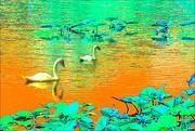 2nd Oct 2020 - Minsi Lake Edit 1