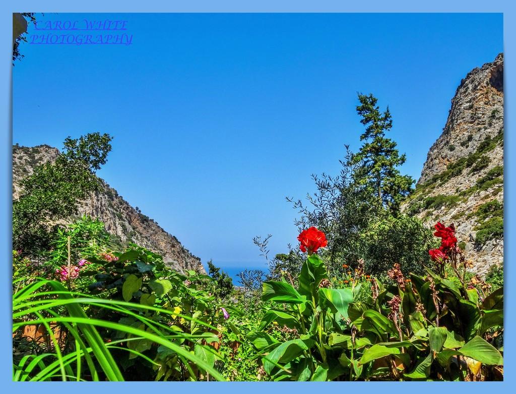 View From Agios Georgios Monastery,Crete by carolmw