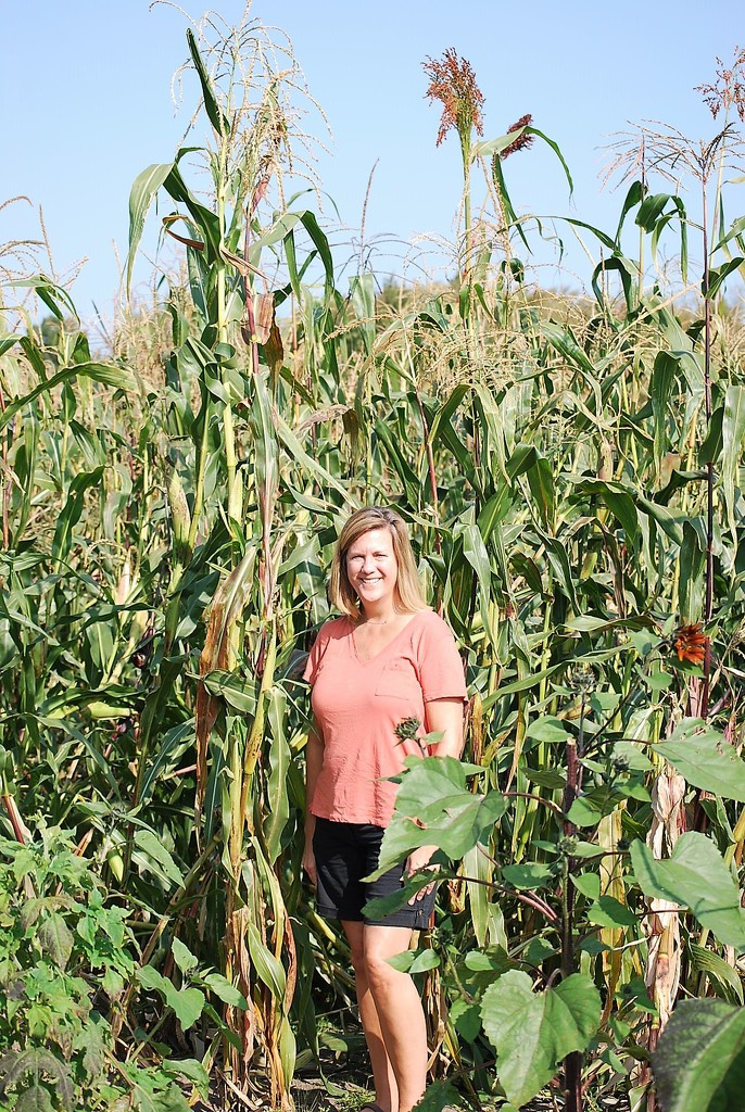 kernal of corn by stillmoments33