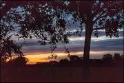 3rd Oct 2020 - Lovely stripey sky yesterday morning!